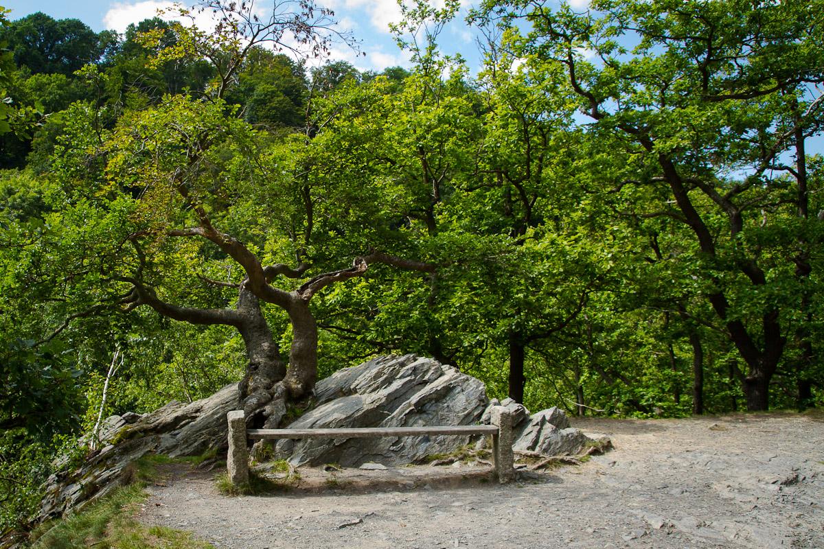 Sonnenklippen (Bodetal) im Harz