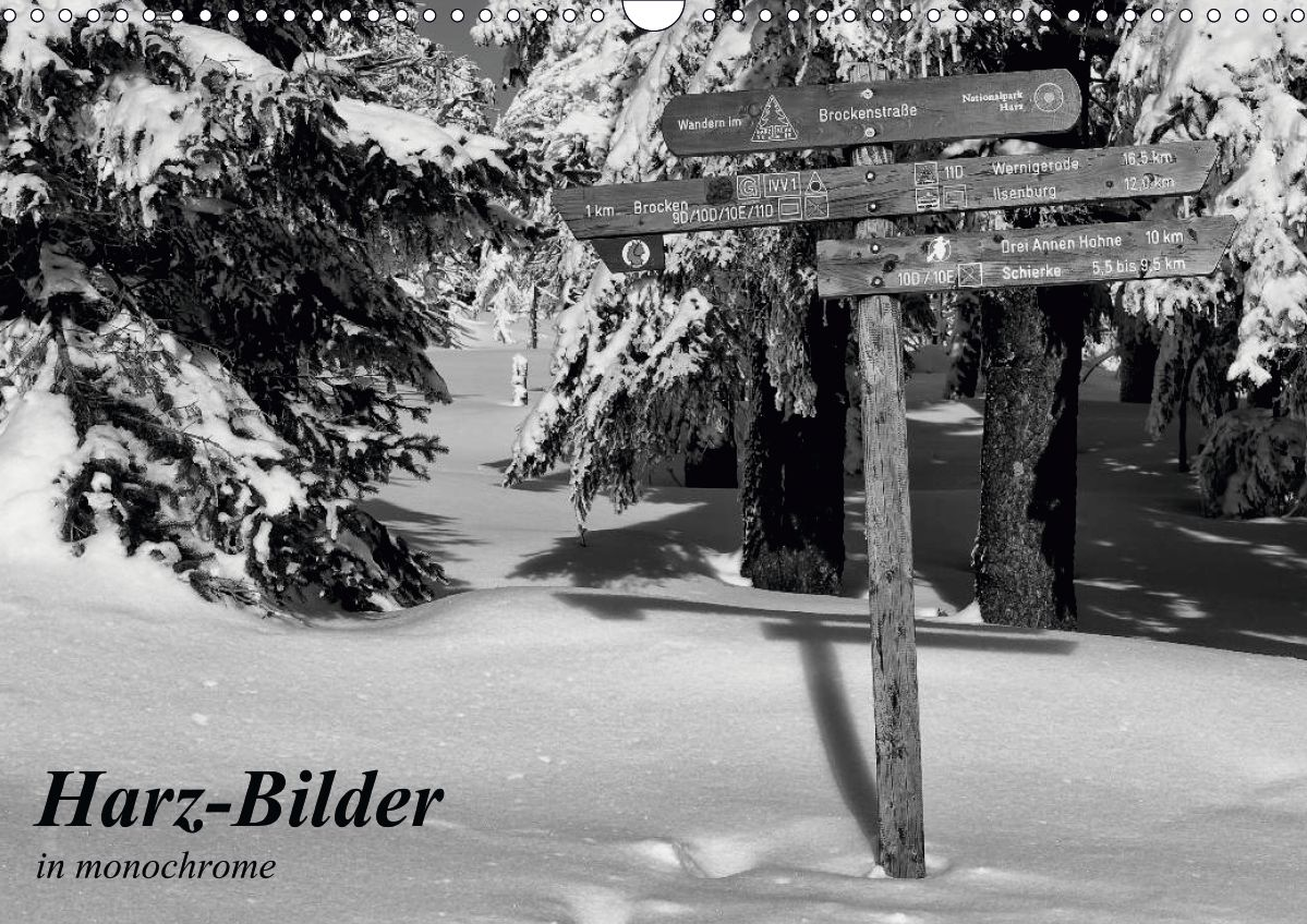 Harz-Bilder in monochrome