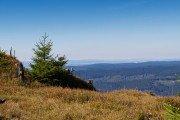 Blick vom Reitstieg im Harz