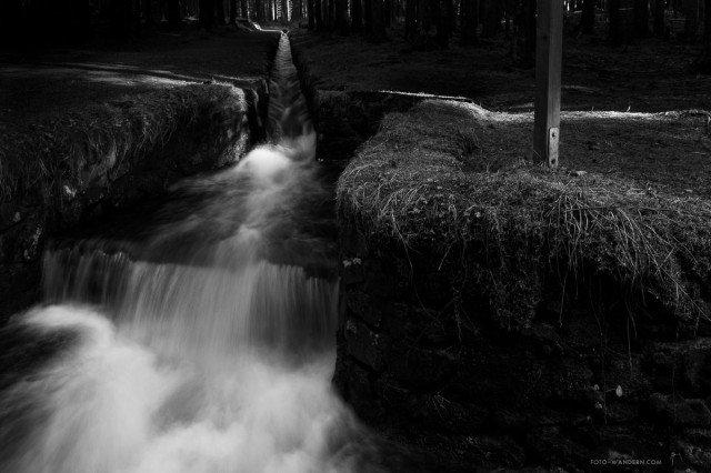 Dammgraben-Oberharzer-Wasserregal