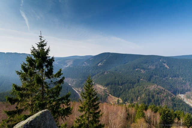 Feigenbaumklippe, Harz- Andreas Levi