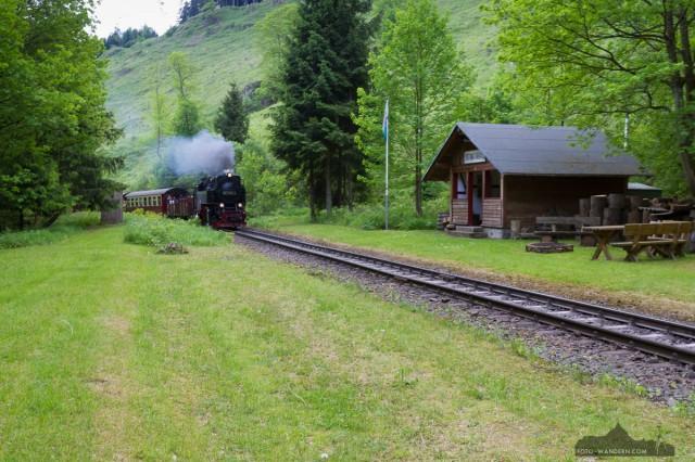 auf dem Weg zur Tiefenbachmühle im Naturpark Südharz06©Andreas Levi