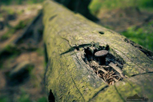 take care© Andreas Levi-IMG_4828