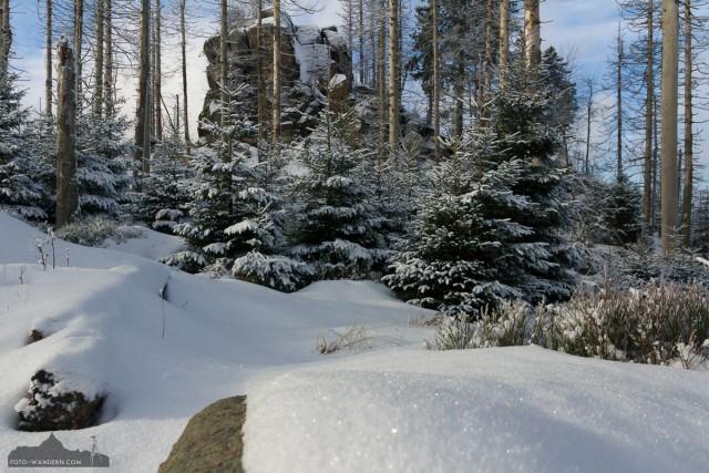 Hopfensack am Kaiserweg im Harz