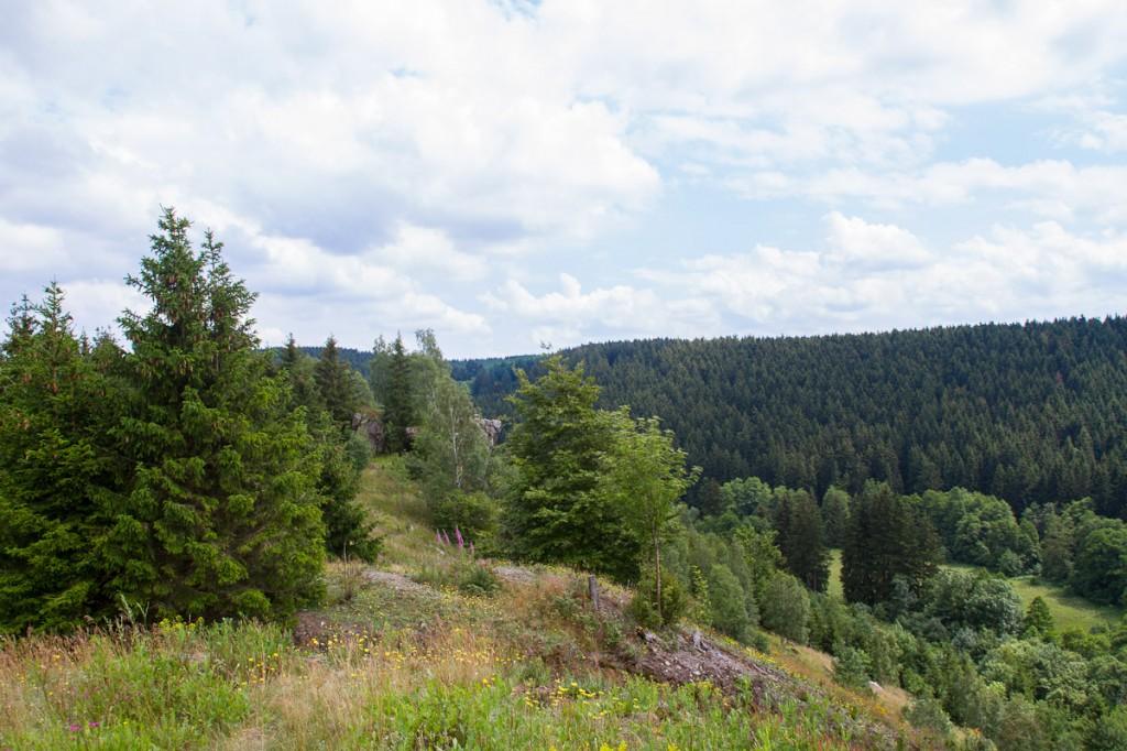 Blick von der Susenburg