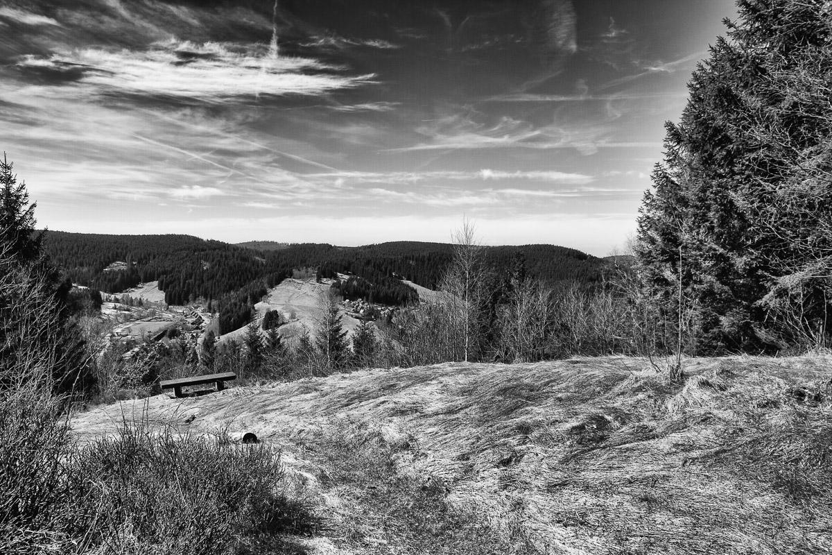 Wildemann, Harz