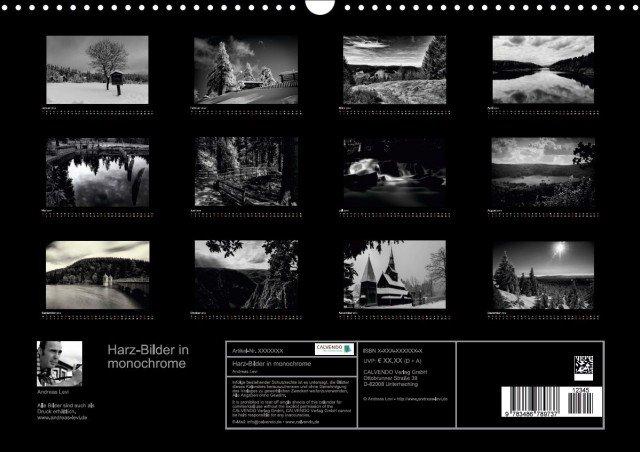 Harz-Bilder in monochrome