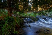 close at the creek