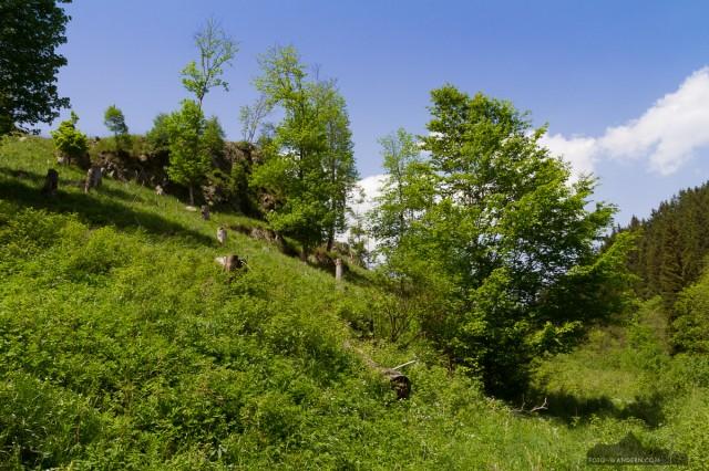 auf dem Weg zur Tiefenbachmühle im Naturpark Südharz04©Andreas Levi