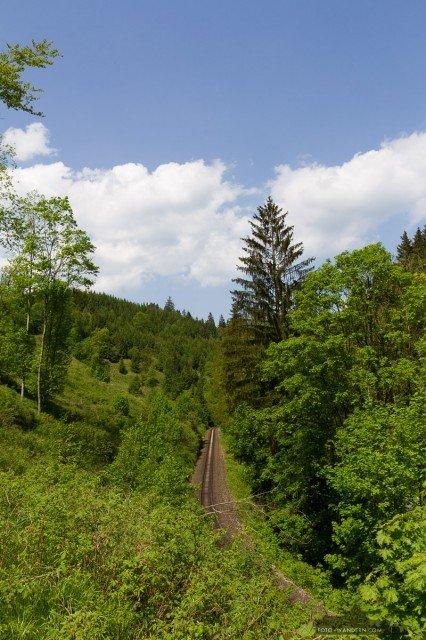 auf dem Weg zur Tiefenbachmühle im Naturpark Südharz05©Andreas Levi