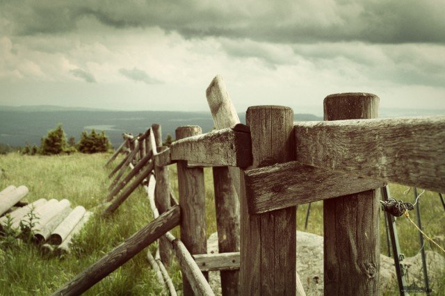 the fence © Andreas Levi-IMG_4607