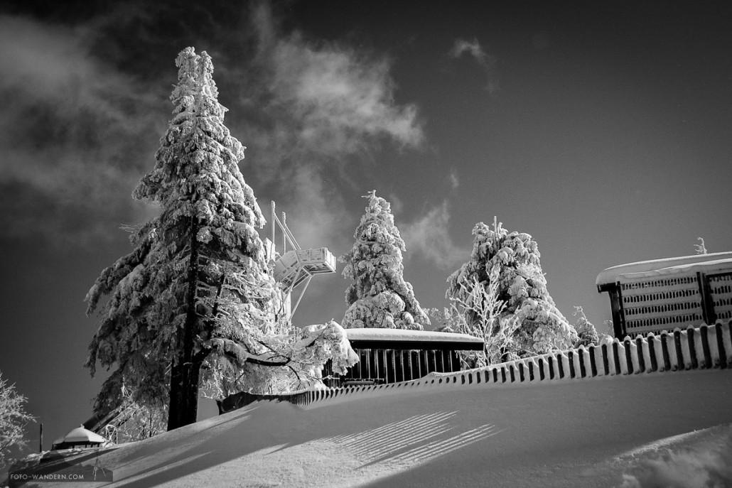 © Andreas Levi 2009-02-12-055