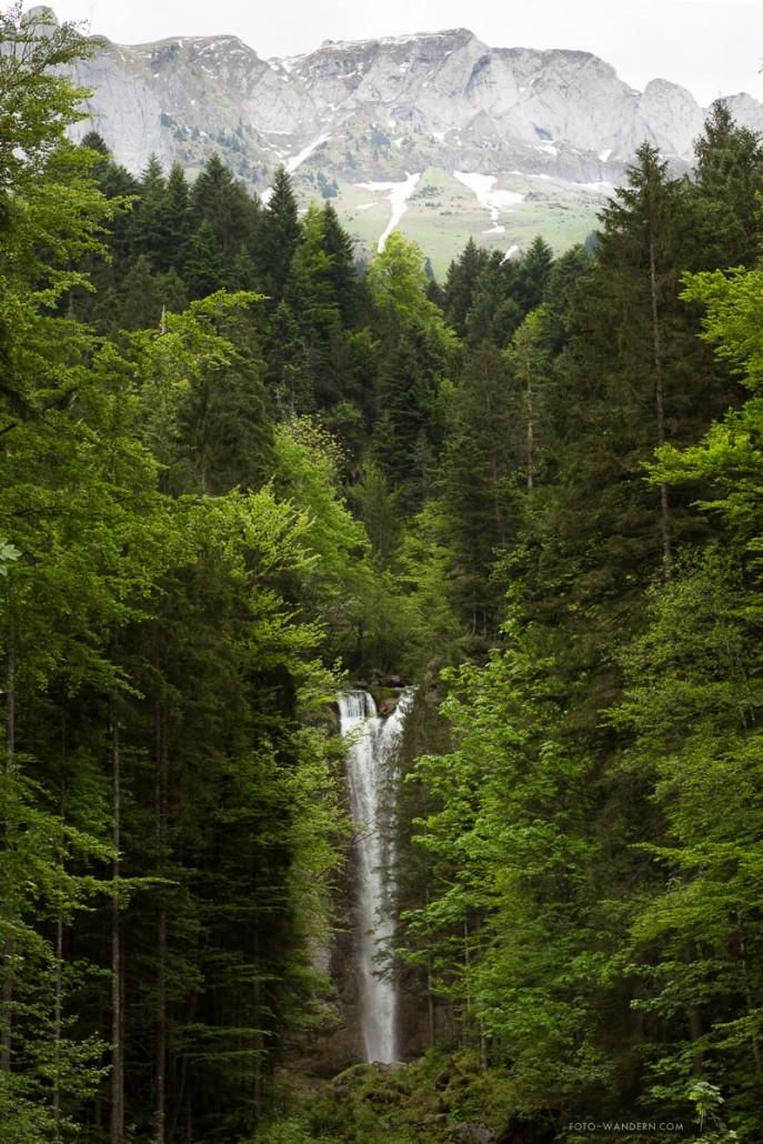 Leuenfall © Andreas Levi-ALP_2065