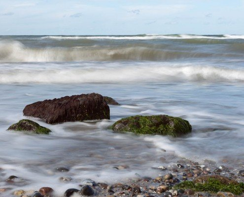 seagrass, stones & waves