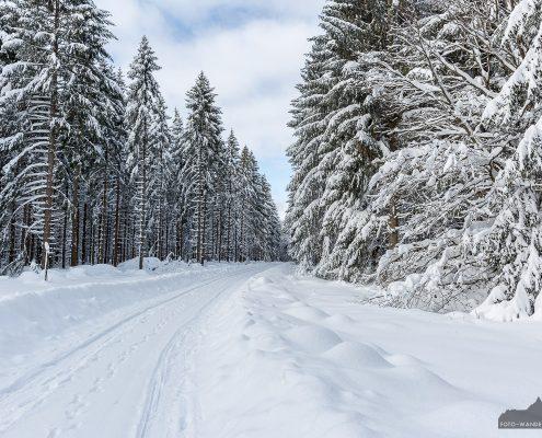 Winterwanderung Benneckenstein - Sorge
