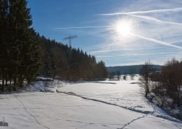 Winterwanderweg Dammbachtal Trautenstein im Harz