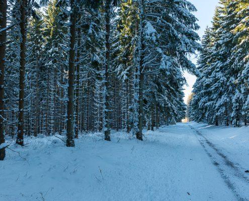 Winterwanderung Spielbachtal bei Königshütte im Harz