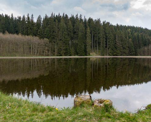 Fotowanderung Harzer Bachtäler - Benneckenstein - Moserteich