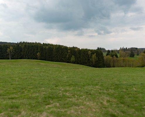 Fotowanderung Harzer Bachtäler - Benneckenstein