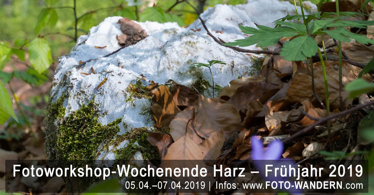 Fotoworkshop-Wochenende-Harz - Frühjahr 2019 - Karst