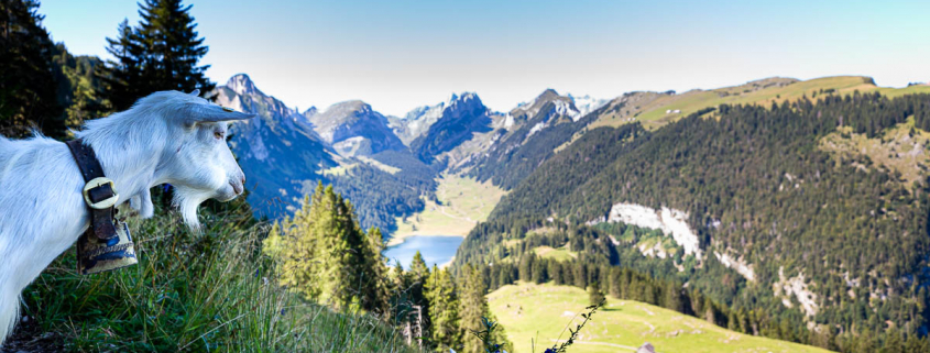 Fotoreisen und mehrtägige Fotokurse 2021 mit Foto-Wandern.com